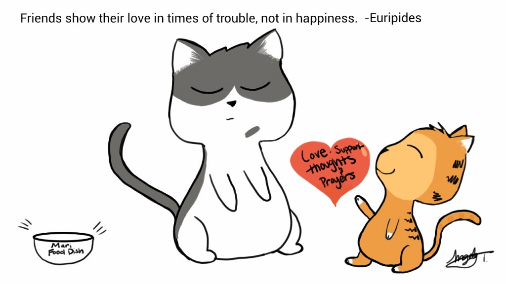 Friends show their love in times of trouble, not in happiness. - Euripides